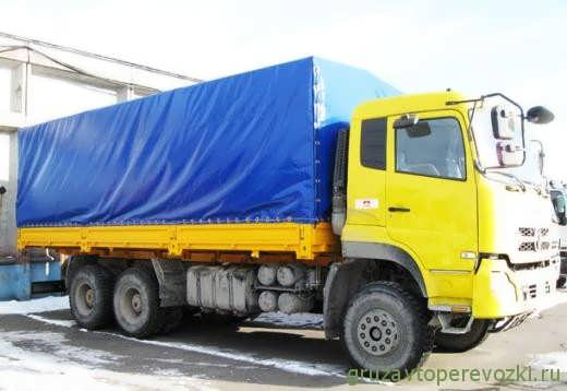 dongfeng 63197